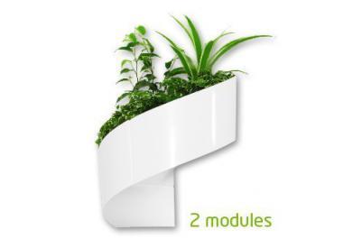 Vaso da parete acquista vasi da parete online su livingo - Portavasi per interni ...